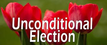 election-tulips